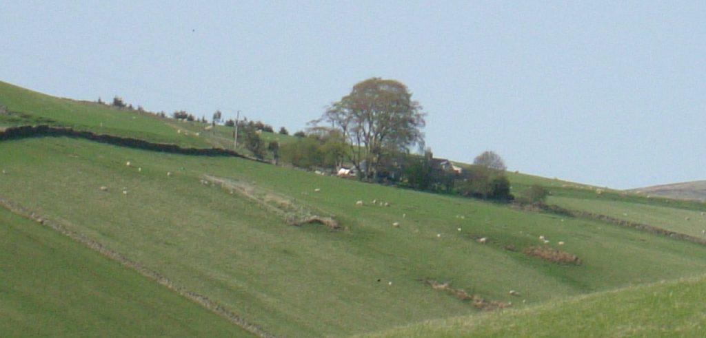 Hoppringle Hill